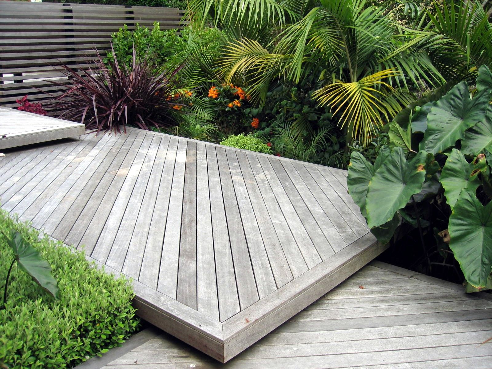 Stepped decking, screen and sub-tropical planting design ...