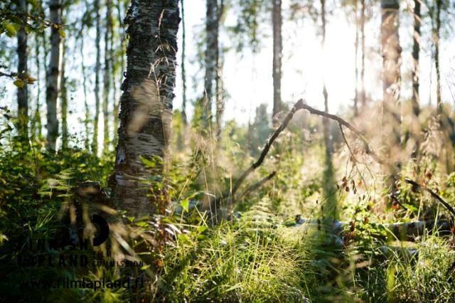 Sodankylä, Finnish Lapland. Photo by Jani Kärppä. #filmlapland #arcticshooting #finlandlapland