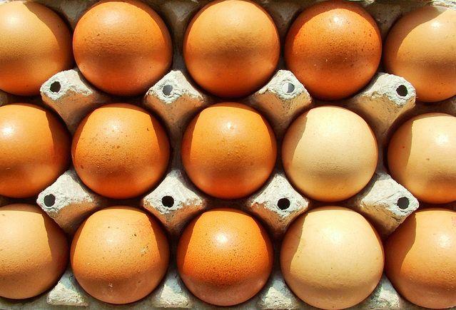 Kananmunassa Proteiinia
