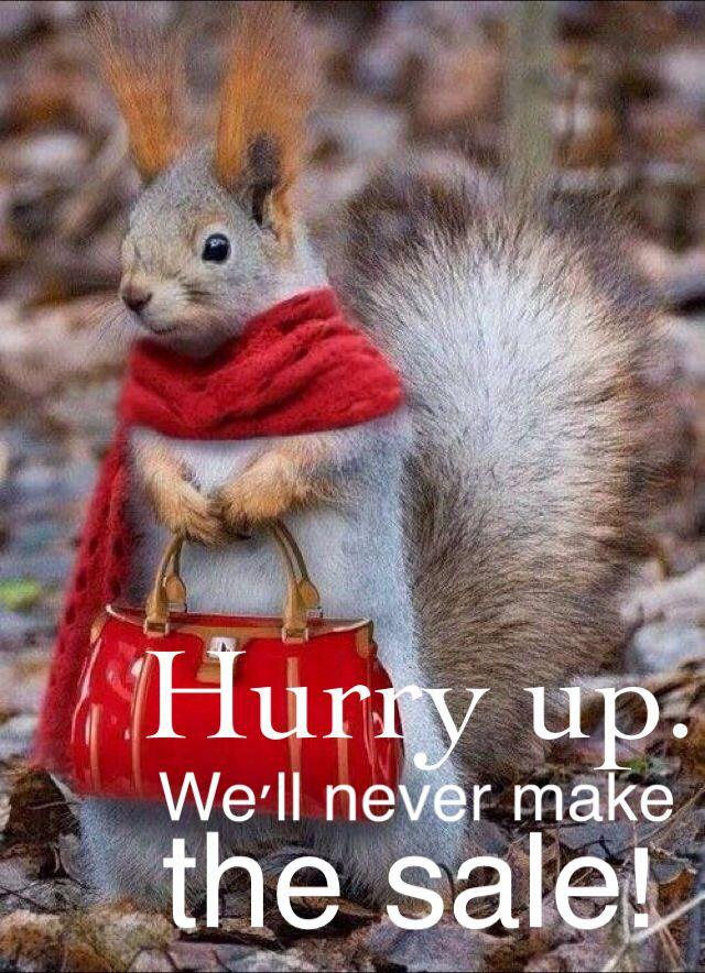 Miss Squirrel