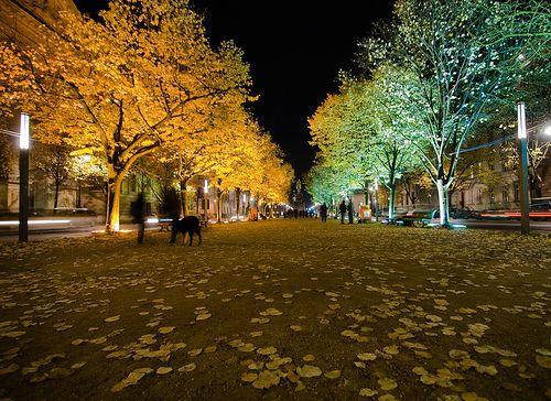 Unter den Linden Festival lights