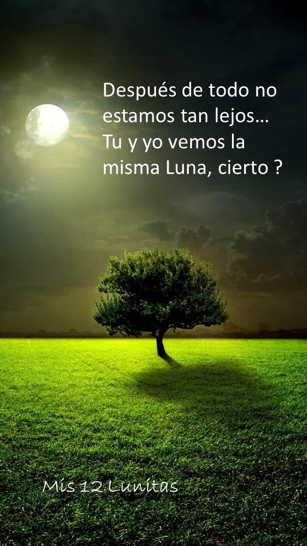 Después de todo no estamos tan lejos… Tu y yo vemos la misma Luna ...