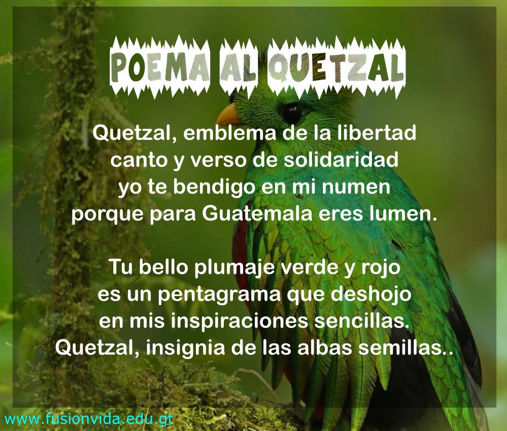 Pin On Maestros De Guatemala
