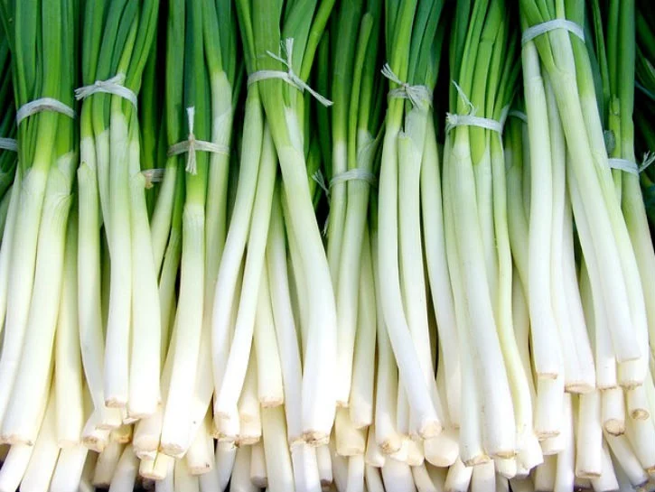 Scallions Vs Green Onions Vs Chives Vs Spring Onions What S The Difference In 2020 Green Onions Growing Green Onions Spring Onion