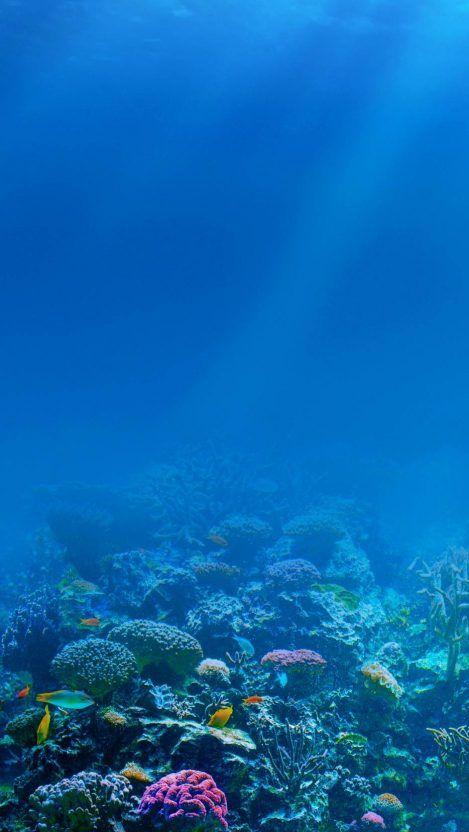 Underwater iPhone Wallpaper from iphoneswallpapers.com