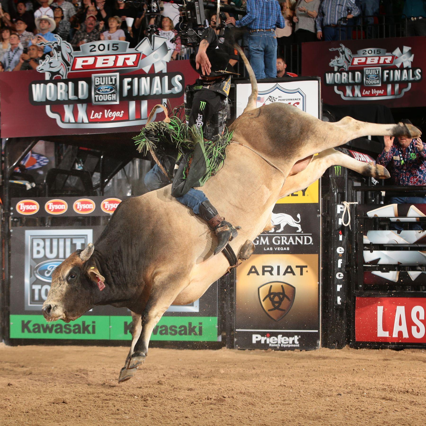 Bruiser Pbr World Champion Bull Contender D Amp H Cattle Co Jb Mauney Rides For 92
