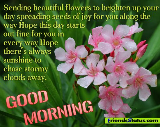 Good Morning My Friend Quotes: Good Morning And God Bless Quotes
