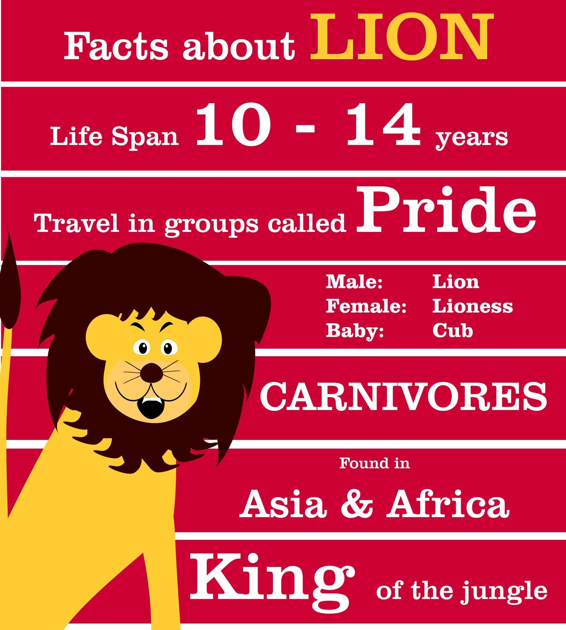 Lion Fact Worksheet   Printable Worksheets and Activities for Teachers [ 2048 x 1840 Pixel ]