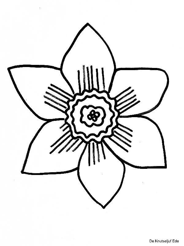 narcis knutselen met peuters knutselen bloemen