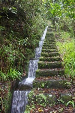 Erstaunlicher gestufter Rill. Gepinnt für Garden Design - Water Features von BASK Design. # ... - Gartengestatung 2019 #waterfeatures