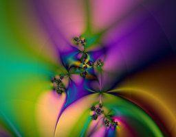 Rainbow Garden by wyer