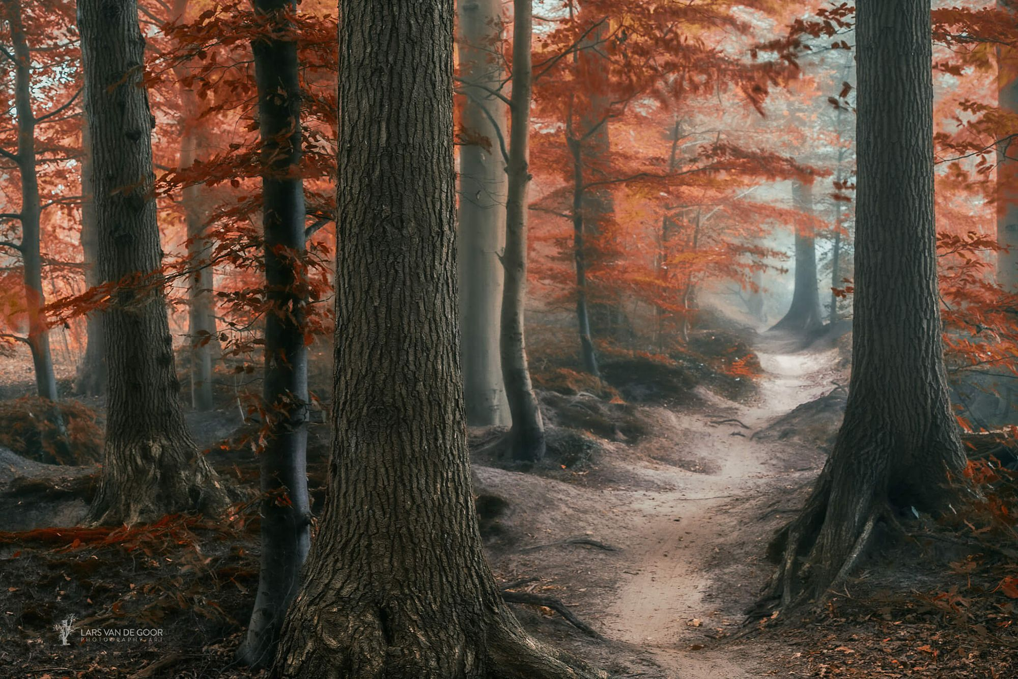 Path of Merdien by Lars van de Goor on 500px