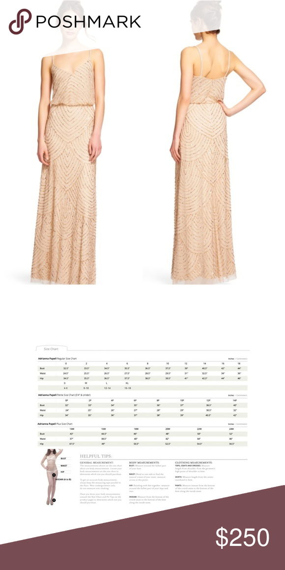 e5204a23c888 ADRIANNA PAPELL Art Deco Beaded Blouson Gown ADRIANNA PAPELL Art Deco Beaded  Blouson Gown in Champagne