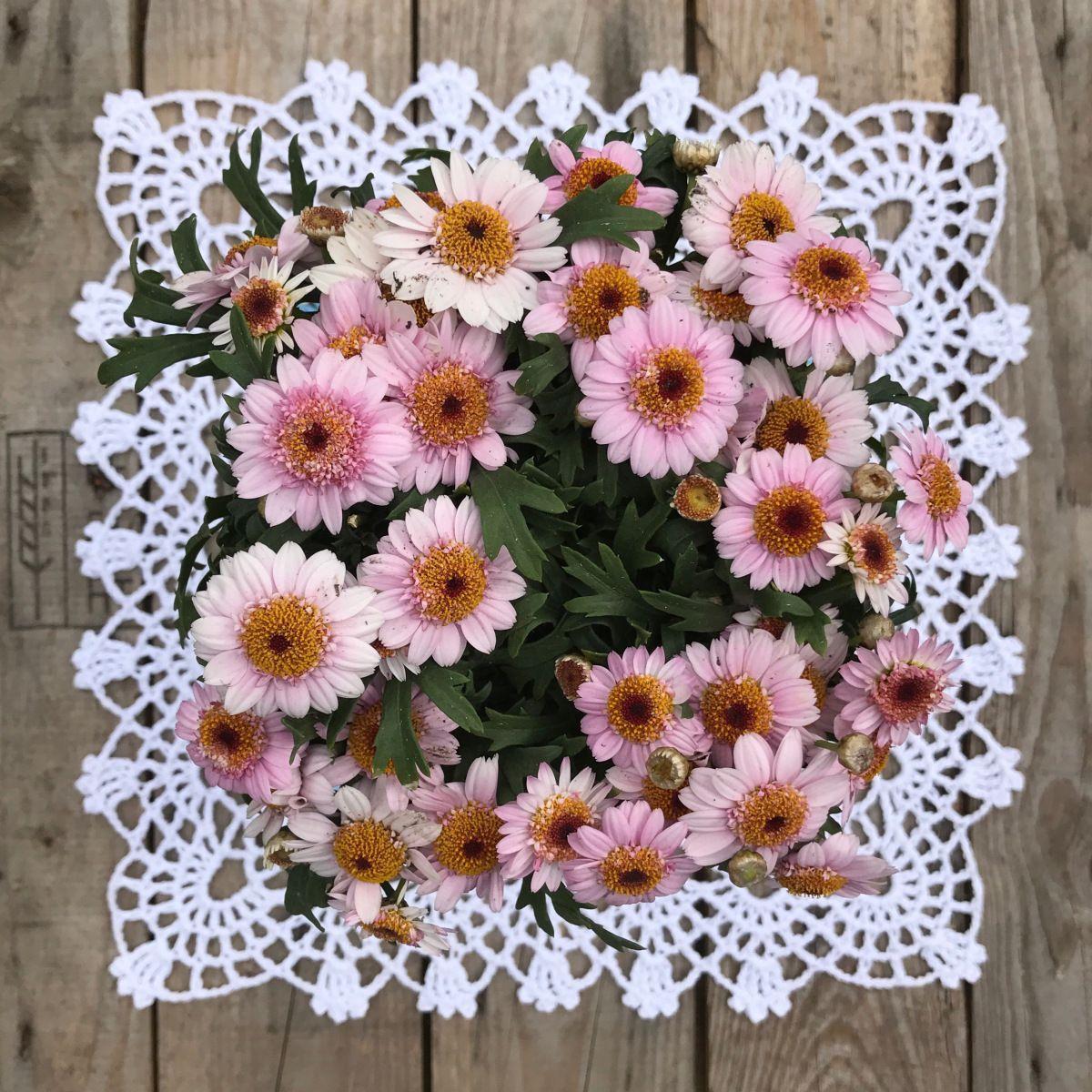 Wilde flower edge- free pattern.