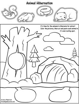 Hibernation Worksheet Activity Hibernation Kindergarten