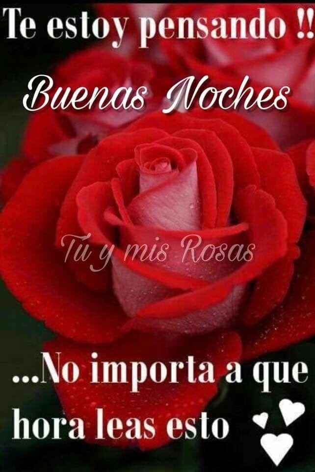 Pin By Alejandra Molina On Ocaso Good Night Flowers Good Night Messages Good Night Prayer
