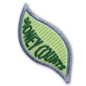 Girl Scout Daisy Money Counts Leaves Badge. Check out the requirements in The Girl's Guide to Girl Scouting. Girl Scout badges $1.50.