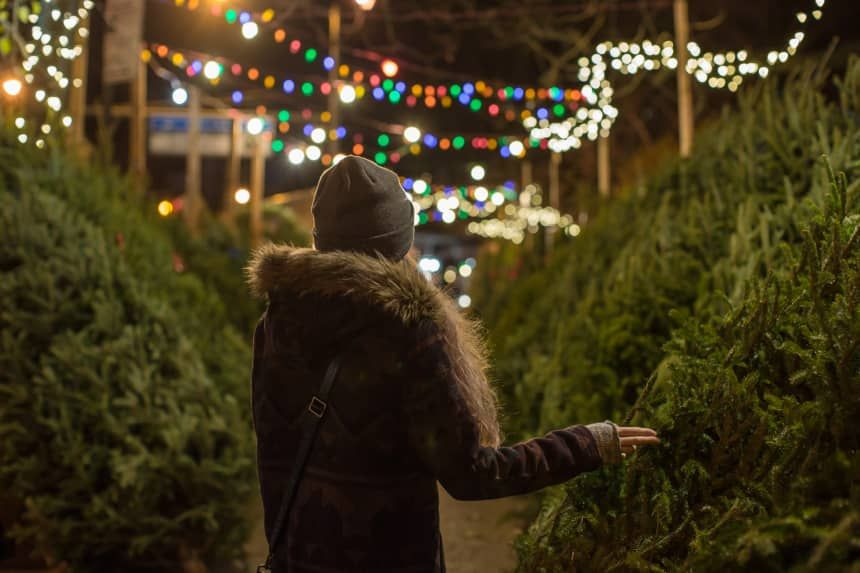 These Hallmark Christmas Movie Filming Locations Are Real Towns You Can Visit | Real christmas ...