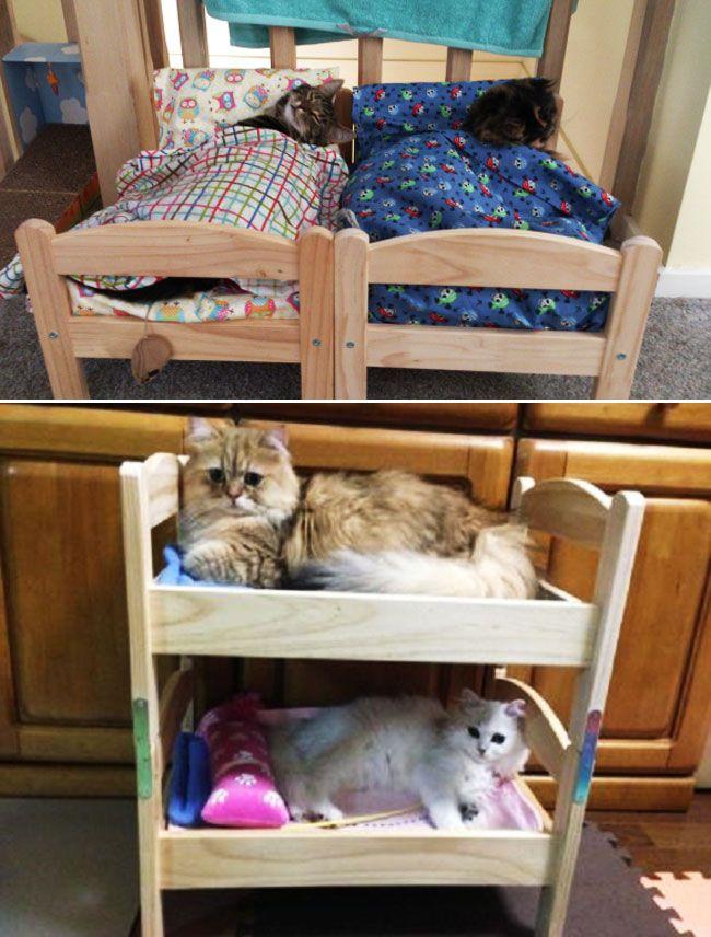 explorez chat lits de poupes et plus encore - Linge De Lit Pour Berceau Fille Mini