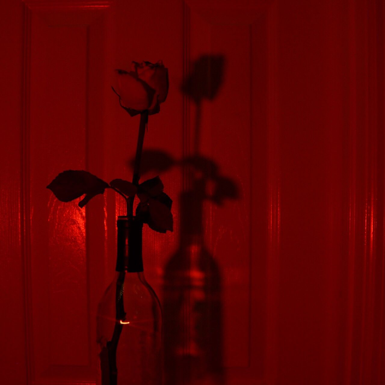 new post on eslamy curvy fashion tumblr red aesthetic. Black Bedroom Furniture Sets. Home Design Ideas