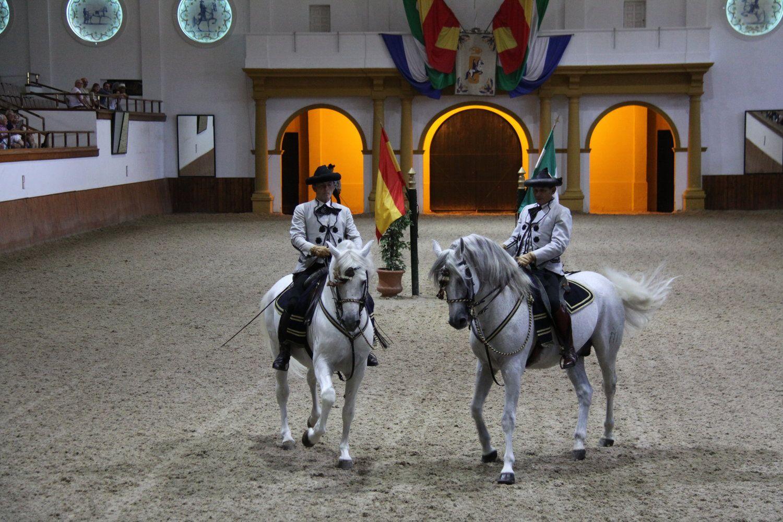 Fundacion Real Escuela Andaluza Del Arte Ecuestre Doma Clásica Paso A Dos 002 Jpg Horse Dance Horses Andalusian Horse