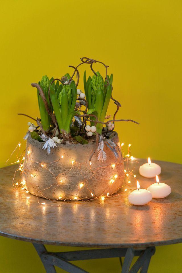 Fleur nouvel an  composition de jacinthes à faire soi-même