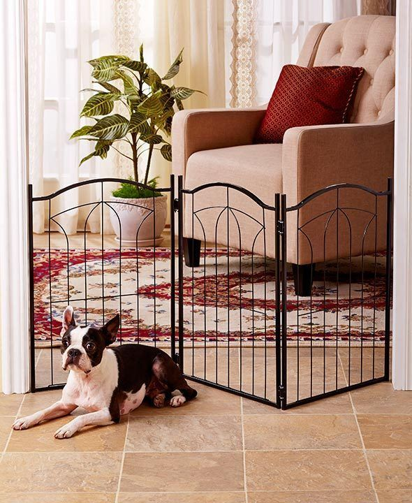 Classic Metal Arch Pet Gate: VERTICAL BARS, ADJUSTABLE, DECORATIVE PET GATE