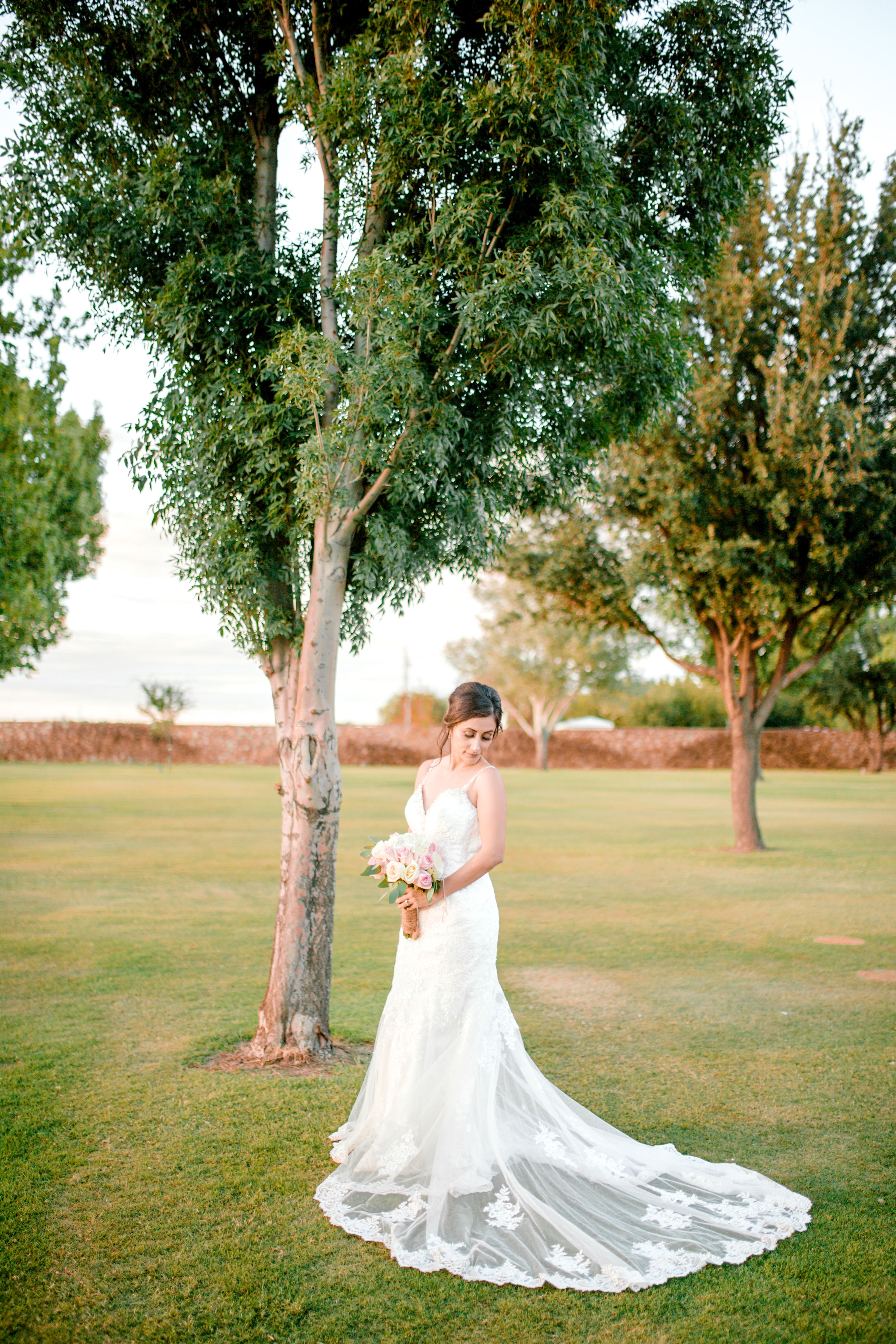 Matt Nancy La Vina Winery El Paso Wedding Sparrow Gold Photography Wedding Sparrow Elopement Photographer Wedding