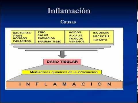 Inflamacion - Fisiopatologia  Parte 1