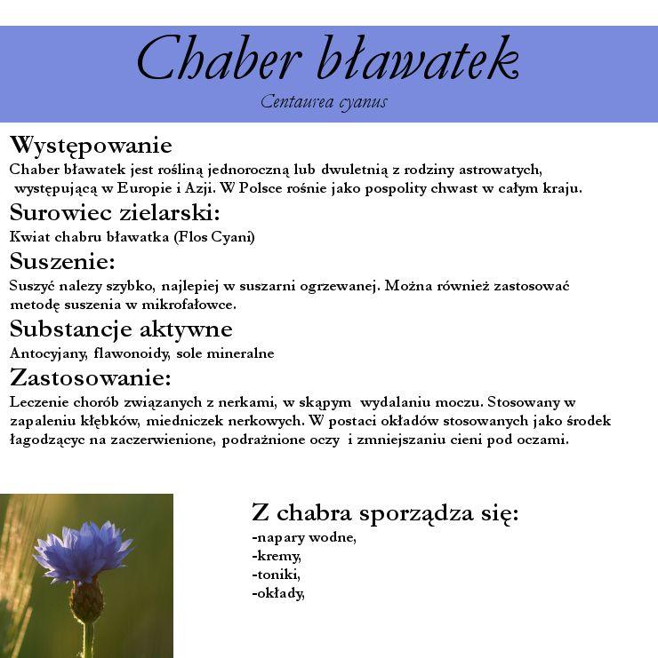 Ziola Kwiaty I Ich Zastosowanie Chaber Blawatek Zastosowawnie W Kosmetyce I W Medycynie Herbology Health Survival