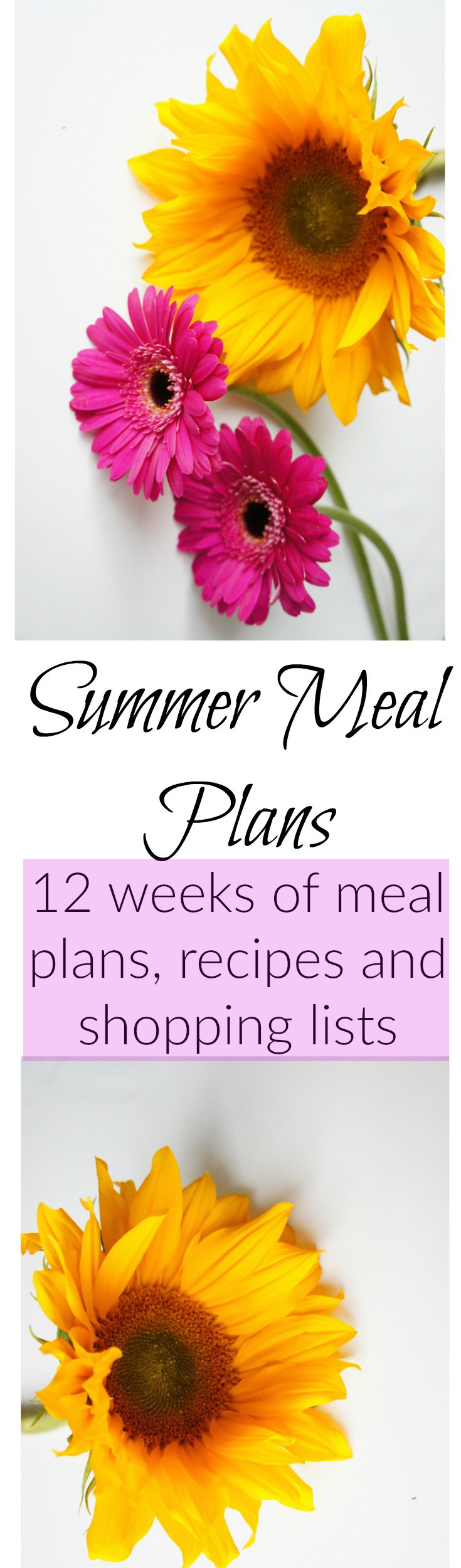 Summer Meal Plans  Meals Summer Meal Planning And Recipes