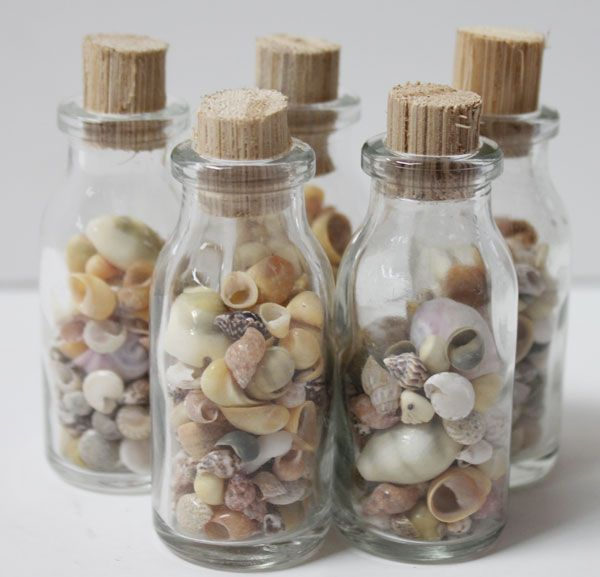Small shell filled glass bottles 12 pieces glass for Best way to sand glass bottles