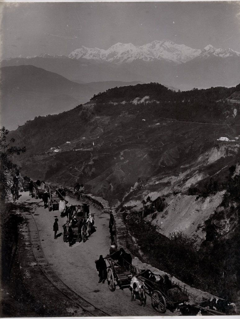 Darjeeling+Road++c188027s.jpg (773×1024) Indian