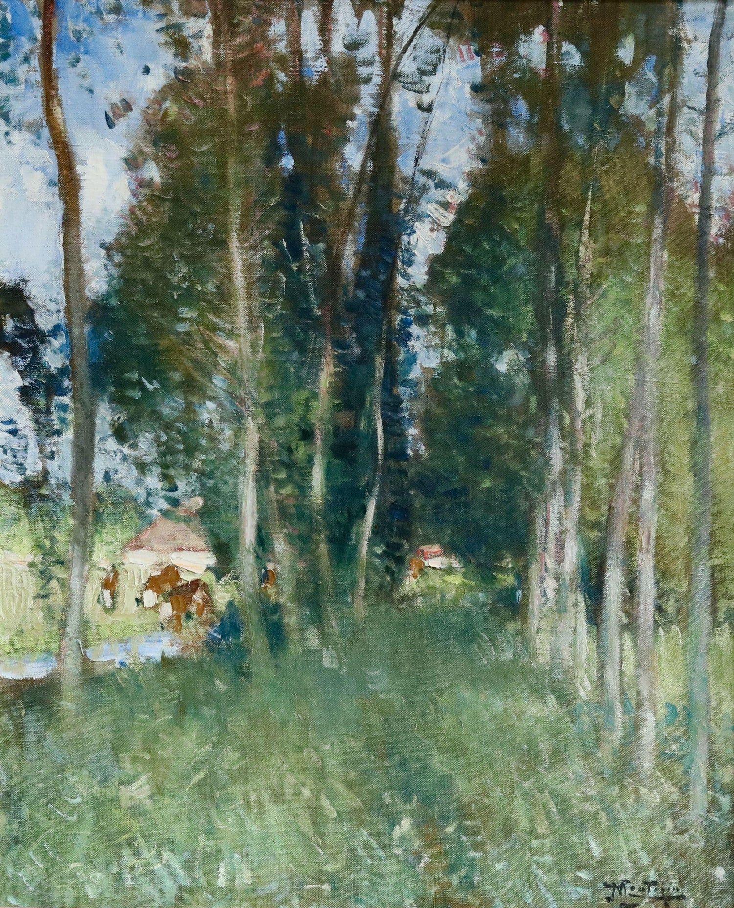 "Картинки по запросу ""northern hardwood forest"""