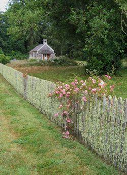 Oysterville Walking Tour Lattice Garden Garden Fencing Backyard Fences