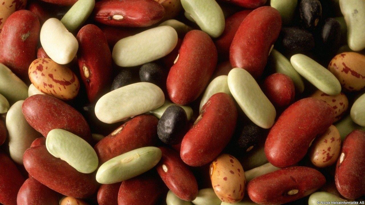 Du kan fint dekke kroppens proteinbehov med et vegetarisk kosthold. Her kan du lese om hvor du finner de vegetariske proteinkildene.