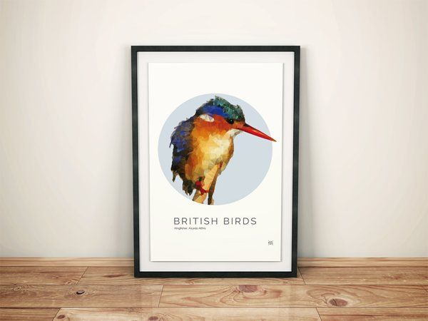 British Birds - Kingfisher Illustration | Pretty Limits - Limited Edition Prints for the Home
