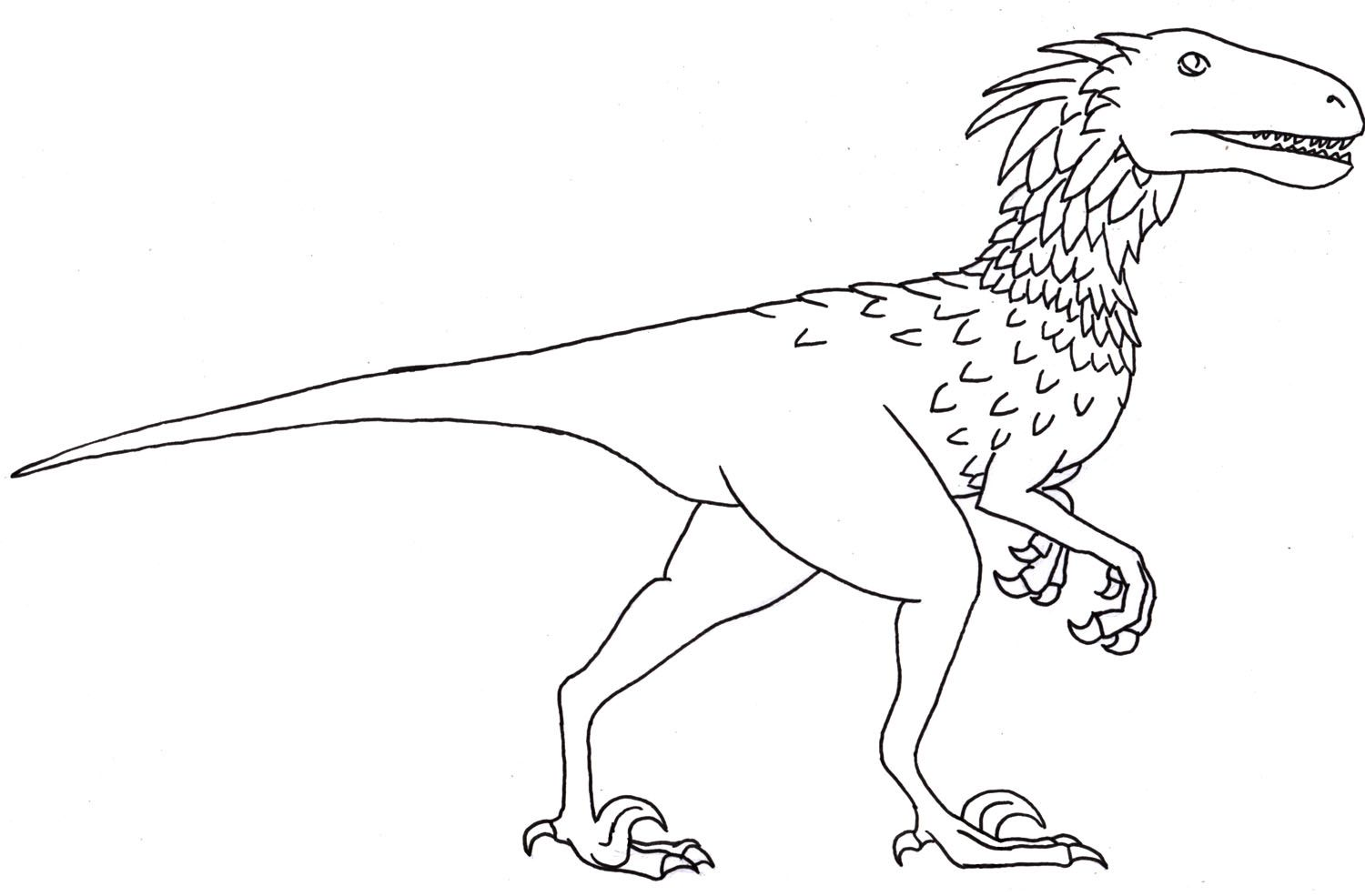 Deinonychus Coloring Page Dinosaur Pinterest Coloring Pages