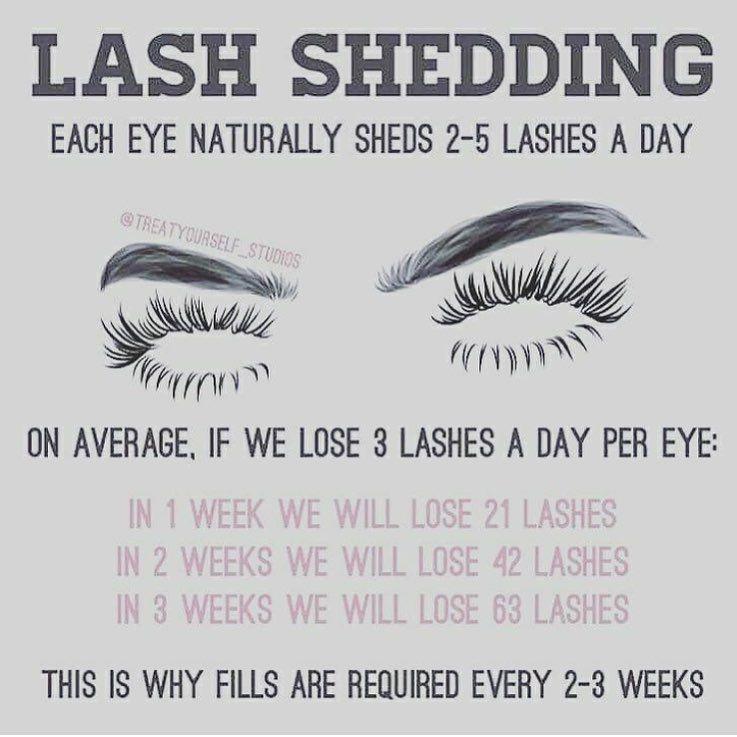 252 Likes 11 Comments Certified Lash Technician Lashedbyriri