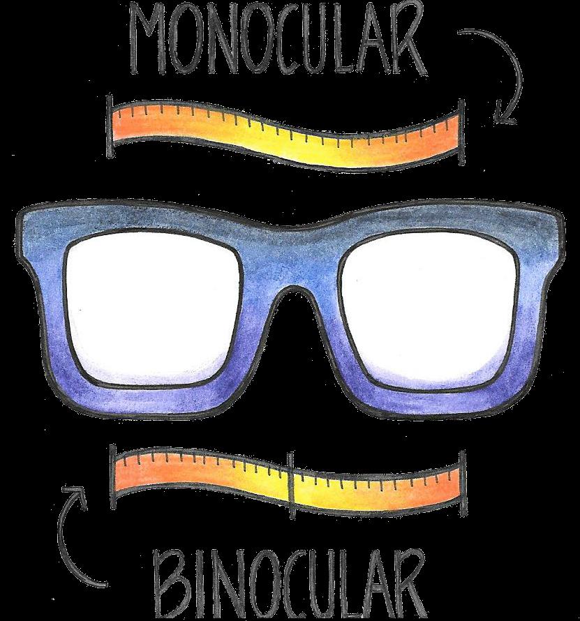 Monocular and Binocular Pupillary Distance (PD) | Website Design ...