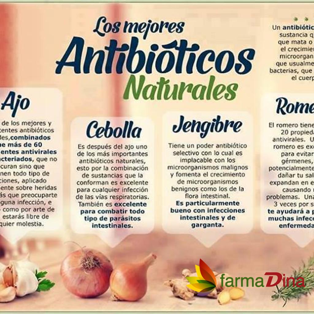 Los Mejores Antibioticos Naturales Farmadina Farmadinacom Resfriados Gripe Enfermedades Medicinafamiliar Obi Remedios Naturales Antibioticos Remedios