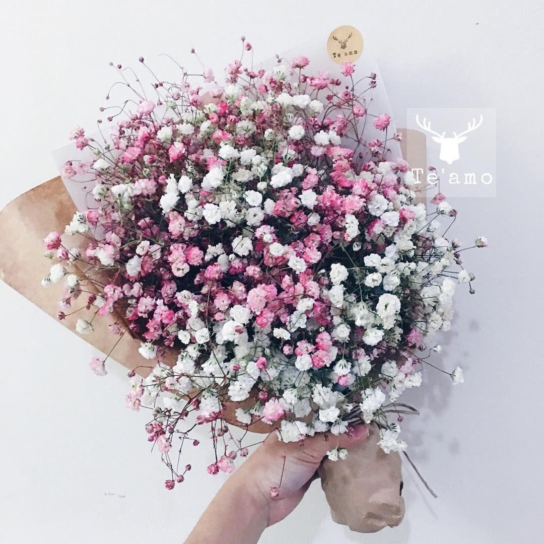 Te Amo My On Instagram No Matter How Long It Takes True Love Is Always Worth The Wait Baby Flowers Bouquet Gift Buckwheat Flower Babys Breath Flowers