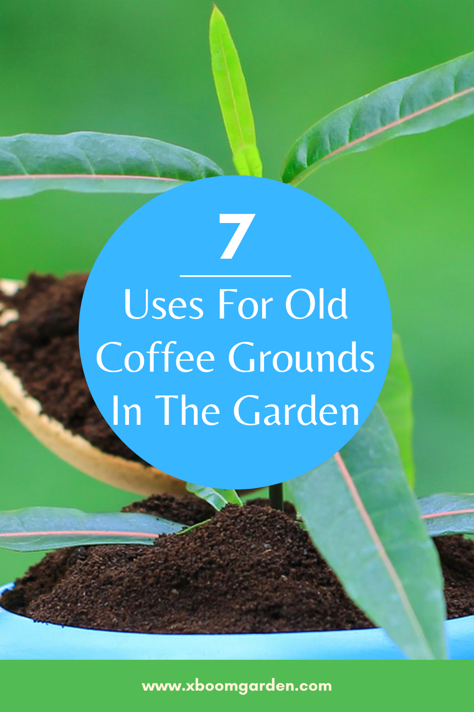 7 Uses For Old Coffee Grounds In The Garden Gardening Tips Garden Garden Soil