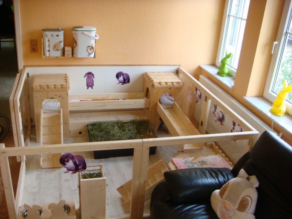 pin von shayla hood auf rabbits pinterest kaninchengehege kaninchenstall und kaninchen. Black Bedroom Furniture Sets. Home Design Ideas
