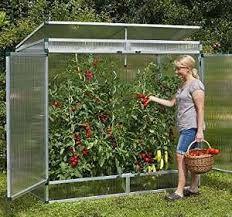 bildergebnis f r tomatenhaus selber bauen pflanzen pinterest garten garten ideen und haus. Black Bedroom Furniture Sets. Home Design Ideas