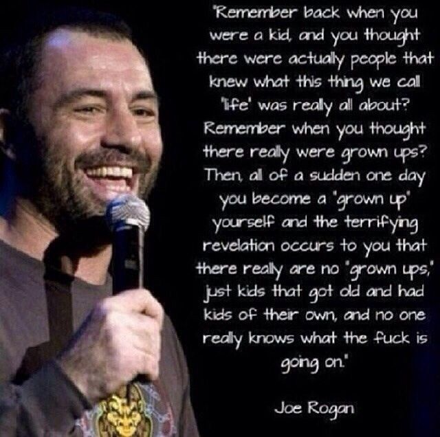 Joe Rogan There Are No Grown Ups Joe Rogan Quotes 15th Quotes Uplifting Thoughts