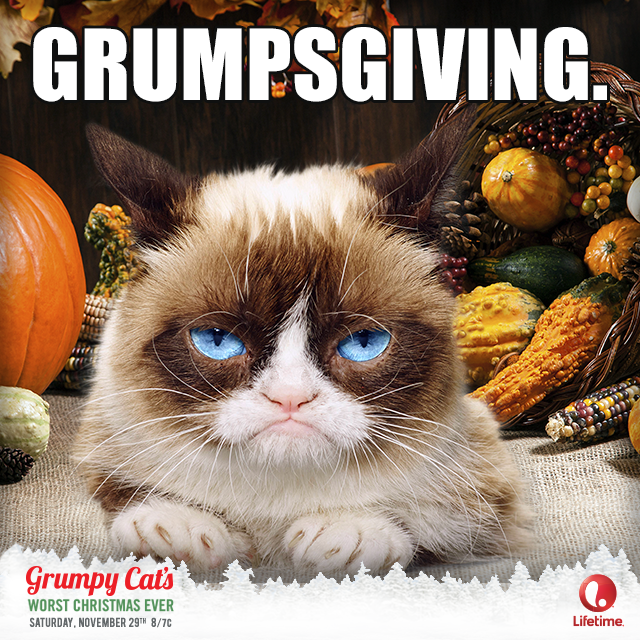 (Un) Happy Thanksgiving. This Saturday Grumpy Cat's Worst
