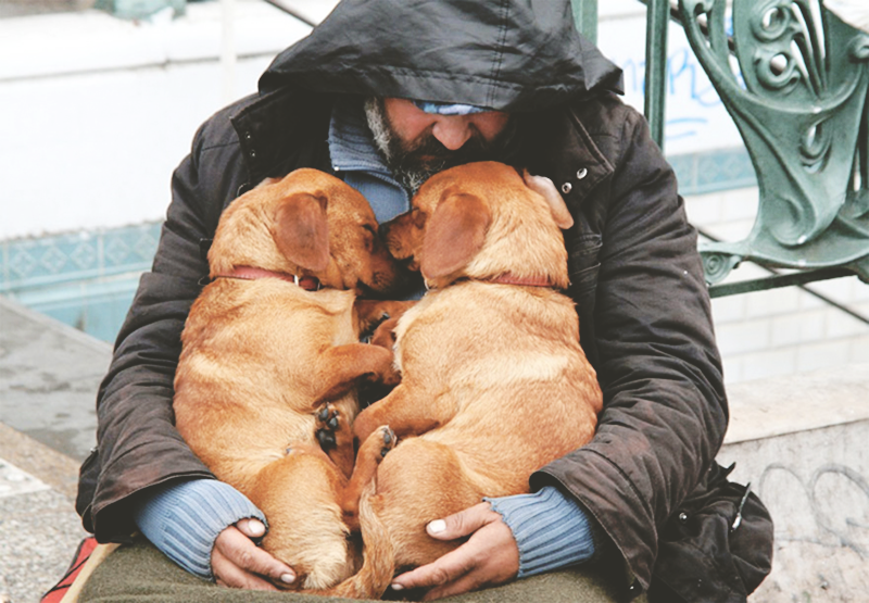 pets-of-the-homeless-5