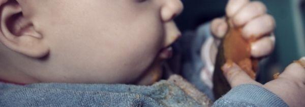 Baby-Led Weaning, erster Überblick, Literaturempfehlung