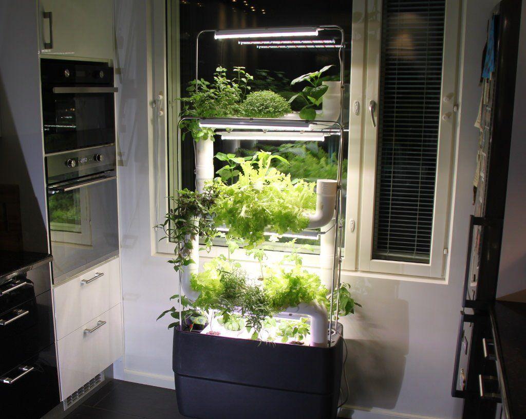 hhome ydroponic garden Google Search Vertical farming